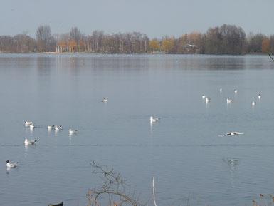 Der Lago Laprello