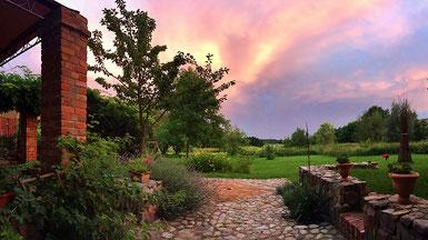 Abend im Rosengarten