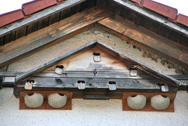 Mauerseglernistkasten und Schwalbennistplaetze (Foto: Richard Straub, LBV-Bildarchiv)