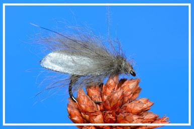 Silver Fox Caddis Amo: # 12/16 Filo di montaggio: grigio Addome: pelo di volpe Torace: pelo di volpe montato ad asola Ali: pellicola sintetica semitrasparente e pelo di volpe