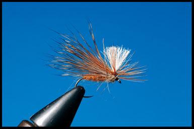 Sedge Parachute    Amo: da secca #10 - #12 Corpo: pelo marroncino Ali: pelo di cervo Parachute: poly bianco Torace: pelo di lepre Hackle: gallo rosso