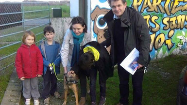 adoption chien refuge - Bréhand (22) - Bretagne