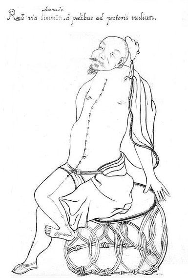 Illustration extraite de l'ouvrage : Specimen medicinae sinicae, édité par Andreas Cleyer