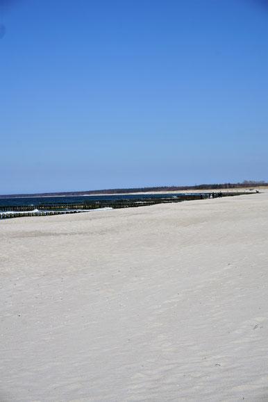 Zwischen Meer und Bodden . Fischland, Darß, Zingst...nie genug!