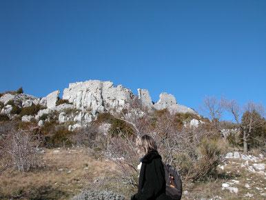 Les  ruines  du  Castelaras  vues  du  versant  sud