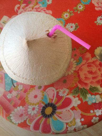 diy kosmetik mit kokosnussà l blog sina s welt kreativ