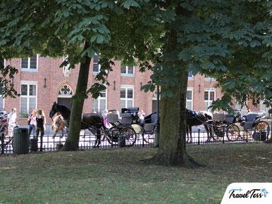 Paardenkoets Brugge