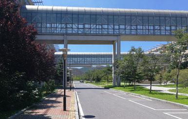 中国 大連外国語大学のキャンパス