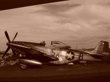 P-51D Mustang - 1/32 Dragon