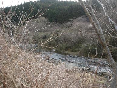 まだ春を待つ入遠野川