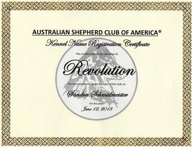 Wir sind Member of Lifetime beim ASCA