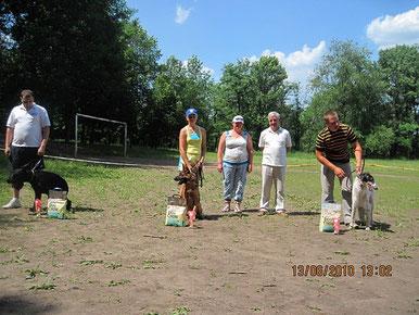 Бэст юниоров,8 собак,2-е место-Нарния Штольц Фатерланд(Конан из Дома Димона-Нэмби фон Нордэн)