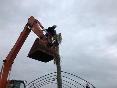 お隣の東和建設の監督に枯れたヤシの木の葉を落としたいと言ったら即、やってくれました。ありがとうございます。
