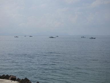 チリメン漁が盛んです。潮が満ちている時は結構手前で網を引いています。パドリング定例会は基本潮が引いている時に行いますし、あまり沖に出ないよう行っていますが、このような状況の時は漁の邪魔をしないよう船に近づかないようにして下さいね。