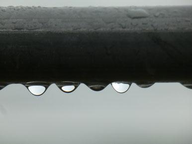 雨まではよいですが、雷はねぇ・・・(T_T)