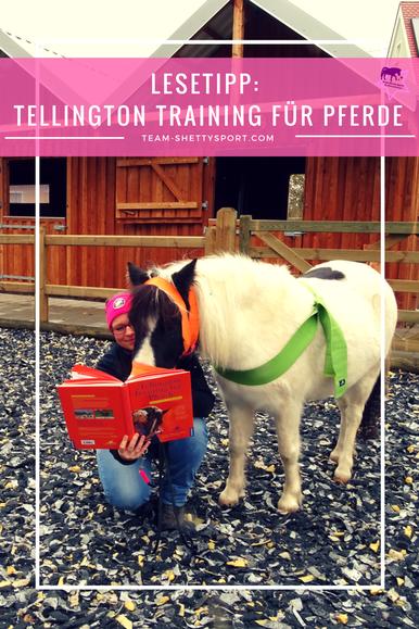 Tellingtontraining für Pferde