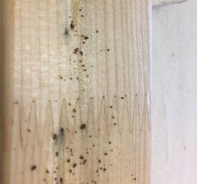 Verunreinigter Keilrahmen - Rückseite