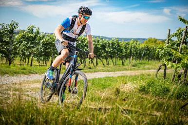 Unsere Experten in Nürnberg West helfen Ihnen gern dabei, mehr über die Technik von Trekking e-Bikes zu erfahren.