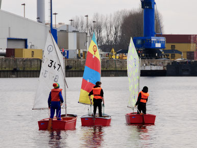 Stehsegler auf dem Köhlfleet. Bild anklicken für weitere Fotos von Alex, Axel und Stephan