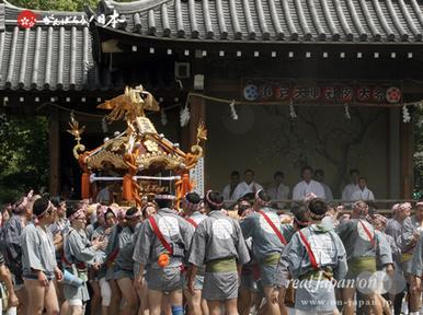 亀戸天神社例大祭(2014) ©️realJapan'on