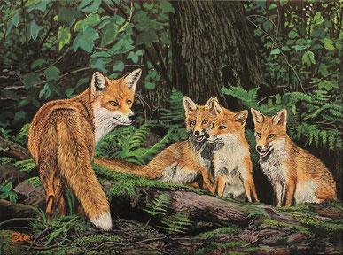 Fuchs mit Nachwuchs 30 x 40