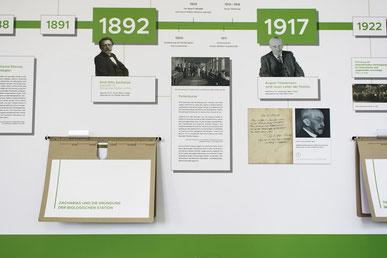 Zeitstrahl Ausstellung Wandgrafik Mappe Max-Planck-Institut