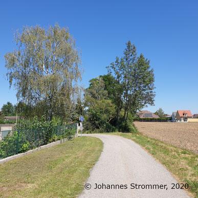 Hinter der Baumgruppe befindet sich das Fundament aus dem vorigen Bild. Der Radweg zweigt links in die Klosegasse ab, während das Gleis gerade weiterging.