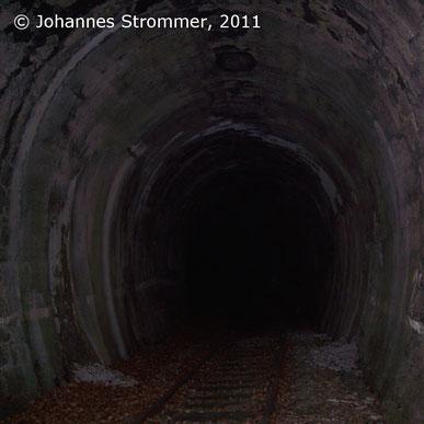 Tunnel bei Lehenrotte (2011)
