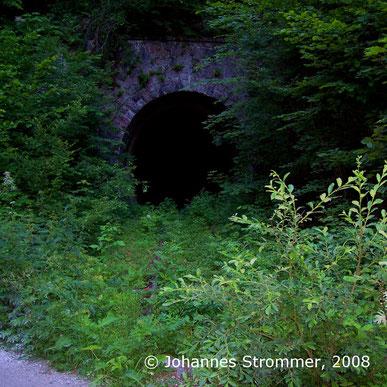Ostportal des Dickenauer Tunnels 2008
