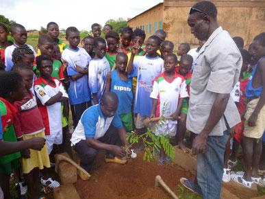 Baumpflanzaktion und Umweltkunde in Tiébélé, August 2015