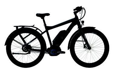 Tranz X, Elektrorad, e-Bike, Victoria, Pedelec,