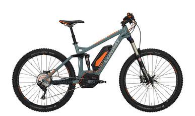 Bosch, Elektrorad, e-Bike, Victoria, Conway, Pedelec,