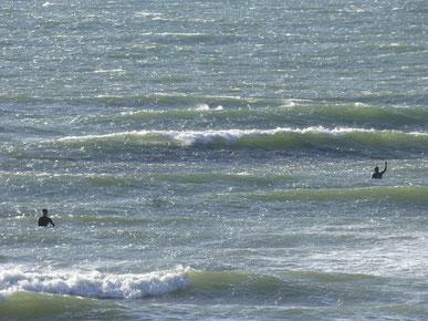 この海面のガタつきが風の強さを物語って・・