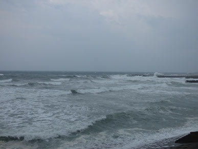 11時 南西うねり、南西の風