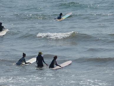 陸トレをしっかり練習し、いざ海へ!ドキドキ~(⋈◍>◡<◍)。✧♡