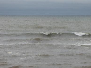 風が南西から北西にシフトし少し落ち着いたように見えましたが、セットが入ると・・