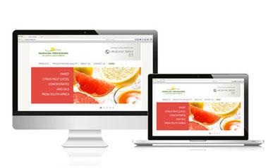 Nkwaleni Processors, Fruchtproduzent