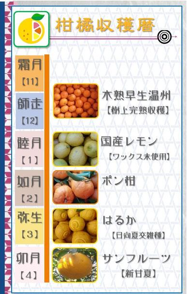 柑橘収穫暦 和×夢 nagomu farm