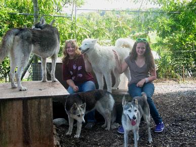 Die Mädels Lisa und Ciara mit unseren Mädels Borea und Zwergli (vorne)