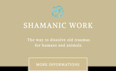 Mit Tieren sprechen - Schamanische Arbeit