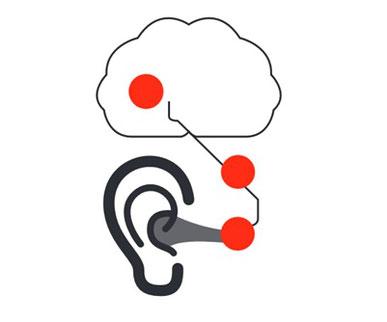Acouphène : de l'oreille au cerveau