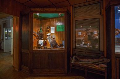 Das Private Museum für Tierkunde in Berlin-Marienfelde.