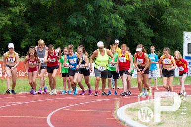 Historischer Startschuss zum 1. Gehwettbewerb in Beeskow (Foto: Philipp Pohle)