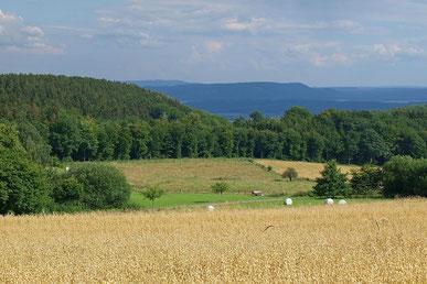 Blick über die Landschaft in Goldbeck. - Foto: Kathy Büscher