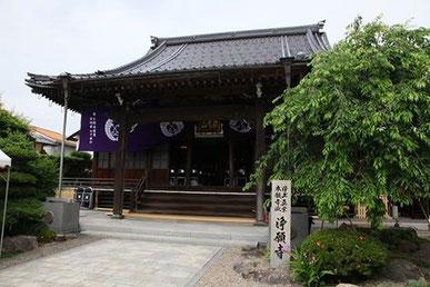 京都市福知山市 浄願寺。わたしが育った田舎の小さなお寺です。紫の幕は行事の時だけ張ります。先の割れた竹竿を使って、本堂の大屋根の金具に紐を引っ掛けて張る、かなりの力仕事です。