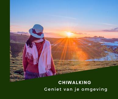 Door ChiWalking geen last van wandel blessures