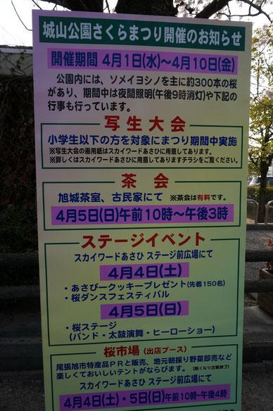 城山公園の2015年さくらまつり 300本のソメイヨシノがお出迎え