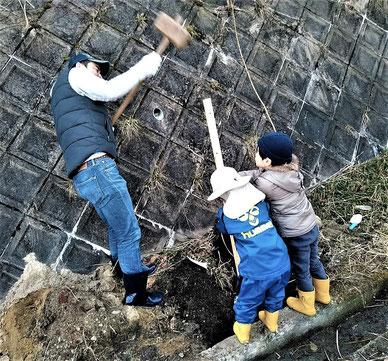 幼児とパパで杭を打つ・・。ちびっ子も多く、事前準備として重機で穴掘りがされました。