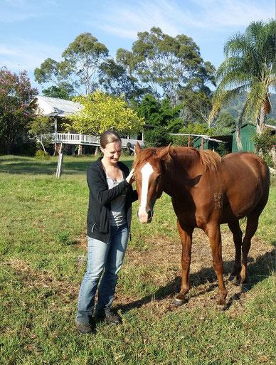 Pferden mit Wertschätzung und Respekt begegnen