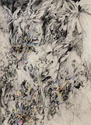 Iris, 2017. Houtskool en pastelkrijt op papier, 100x70cm.